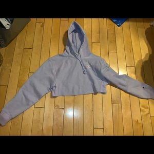 Champion cropped hoodie crop hoody sweatshirt xs